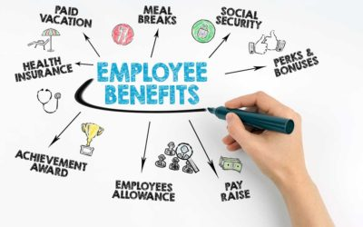 How do you know if a carrier is the best fit for your benefits program?